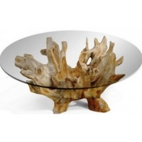 teak-root furniture - glass top 1
